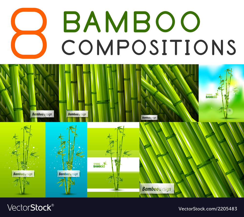 Set of nature bamboo designs vector | Price: 1 Credit (USD $1)