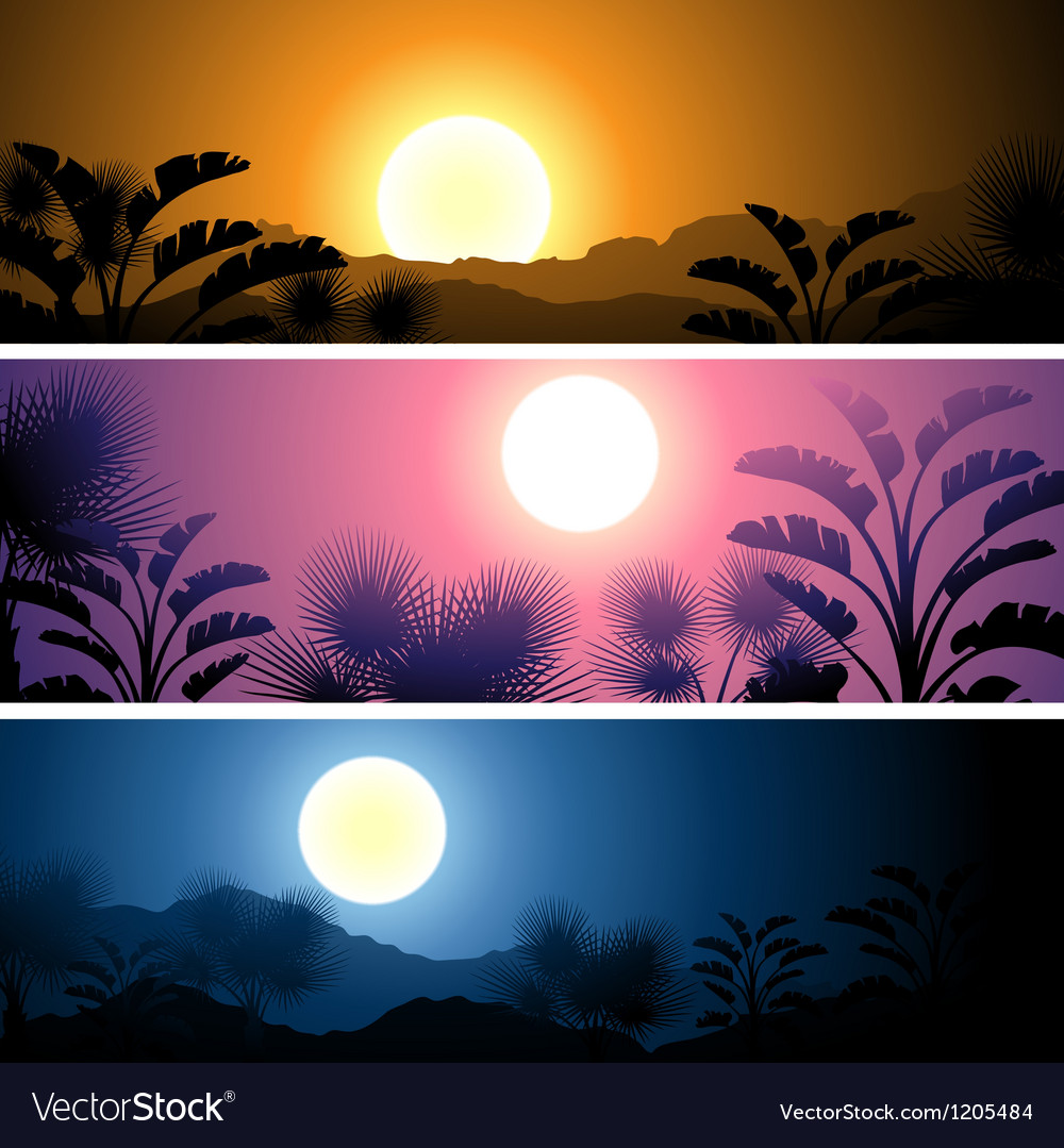 Tropical banners set landscape sun moon and palm vector | Price: 1 Credit (USD $1)