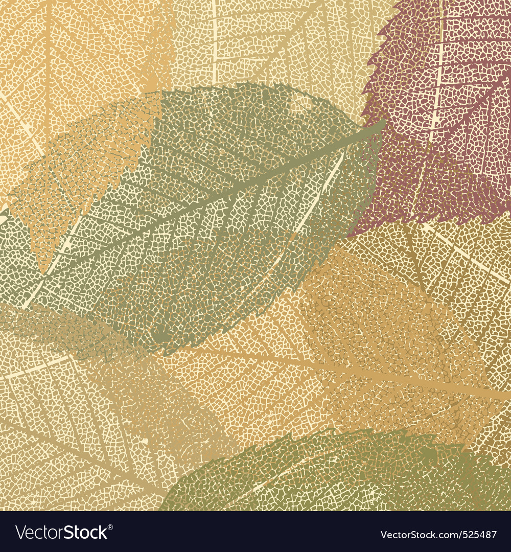 Dry autumn leaves vector | Price: 1 Credit (USD $1)