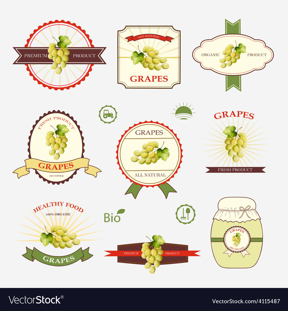 Grapes a set of label design and templates vector | Price: 1 Credit (USD $1)