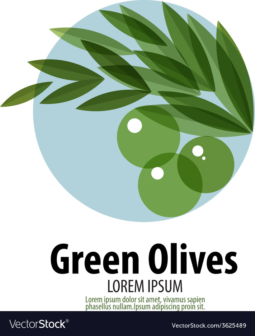 Olives logo design template harvest or food icon vector | Price: 1 Credit (USD $1)