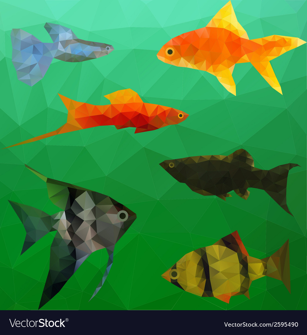 Aquarium fish in polygon style vector | Price: 1 Credit (USD $1)