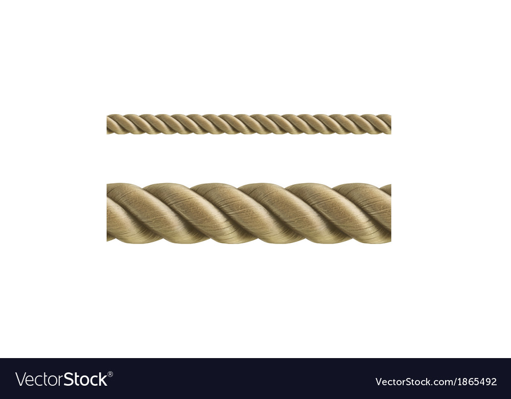 Rope seamless vector | Price: 1 Credit (USD $1)