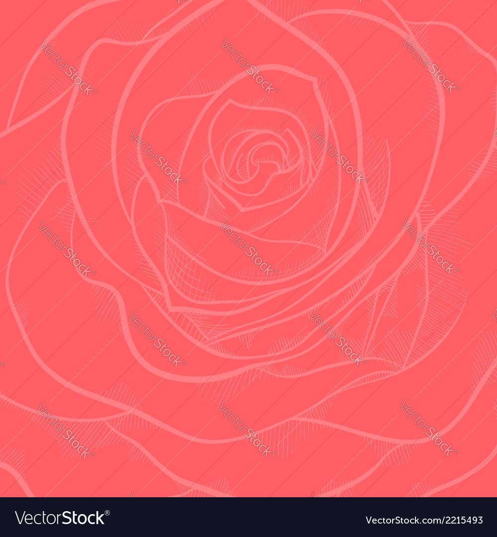 Background with red rose close-up vector | Price: 1 Credit (USD $1)