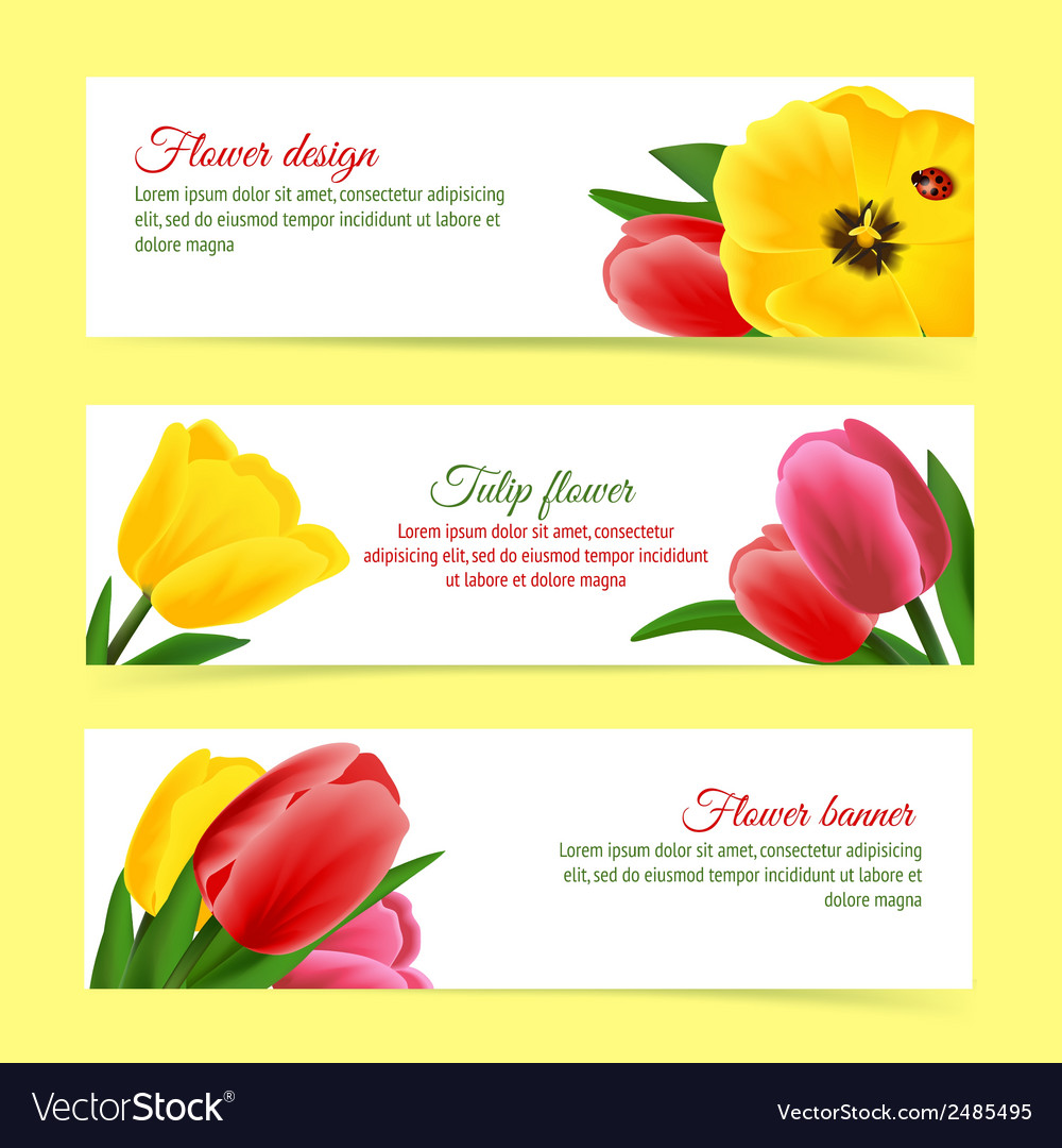 Tulip banner set vector | Price: 1 Credit (USD $1)