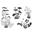 Silhouettes of flowers and herbs vector
