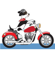 Dog motorcycle vector