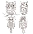 Set of cute owls vector