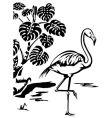 Flamingo vector