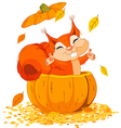Squirrel jumping out of pumpkin vector