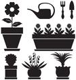 Pot plants vector