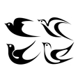 Black bird vector