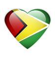 Guyana flag button vector