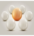 Eggs in the circle vector