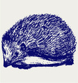 Hedgehog animal vector