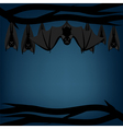 Bats hanging on branch vector