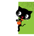 Halloween black cat and a white banner vector
