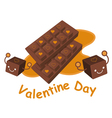 Variety of chocolate collection vector
