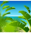Tropical palm on sea background vector