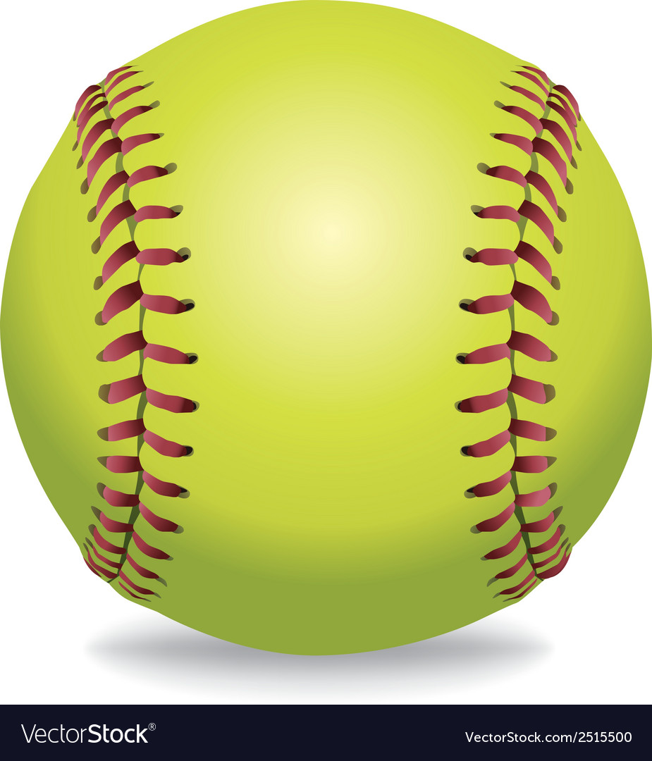 Softball isolated on white vector | Price: 1 Credit (USD $1)
