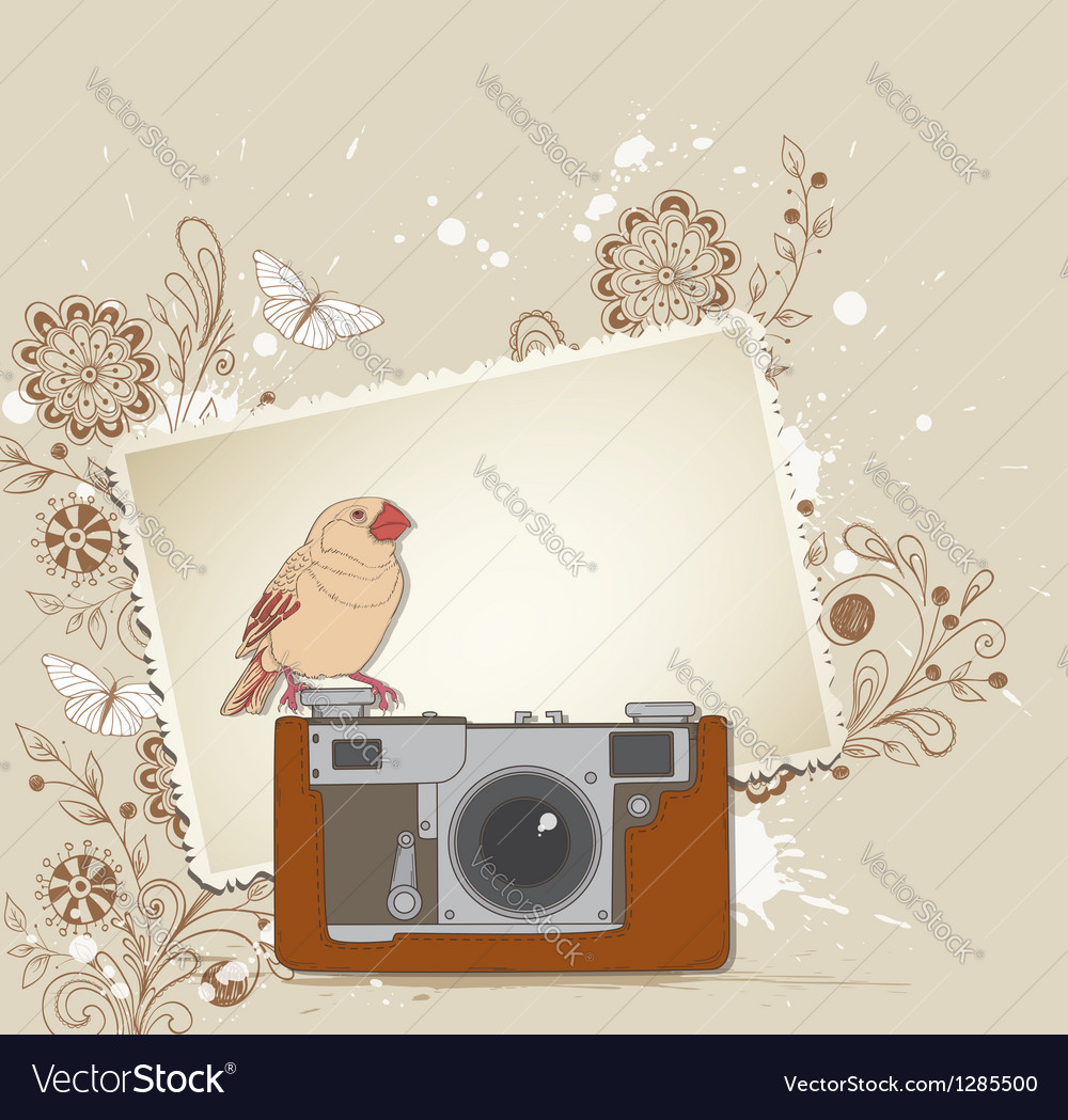 Vintage camera bird vector | Price: 1 Credit (USD $1)