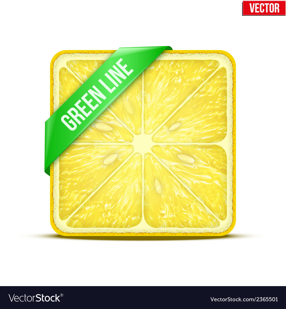 Square slice of lemon green line vector | Price: 1 Credit (USD $1)