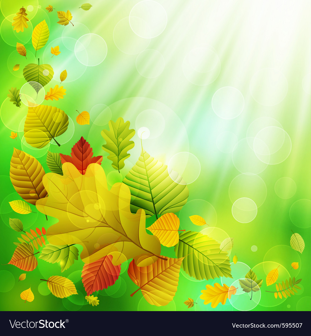 Autumn background with colorful leaves and place f vector | Price: 3 Credit (USD $3)