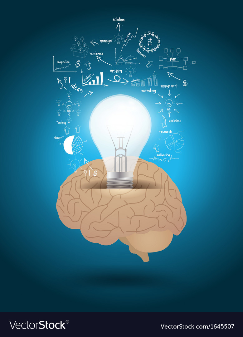 Light bulb with brain drawing business strategy vector | Price: 1 Credit (USD $1)