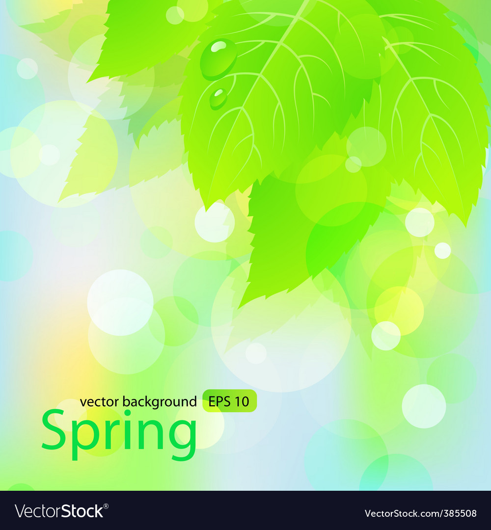Spring background with green leaves vector | Price: 1 Credit (USD $1)