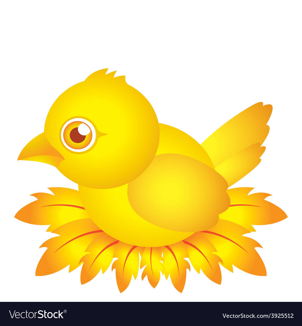 Golden bird baby cartoon character with feather vector | Price: 1 Credit (USD $1)