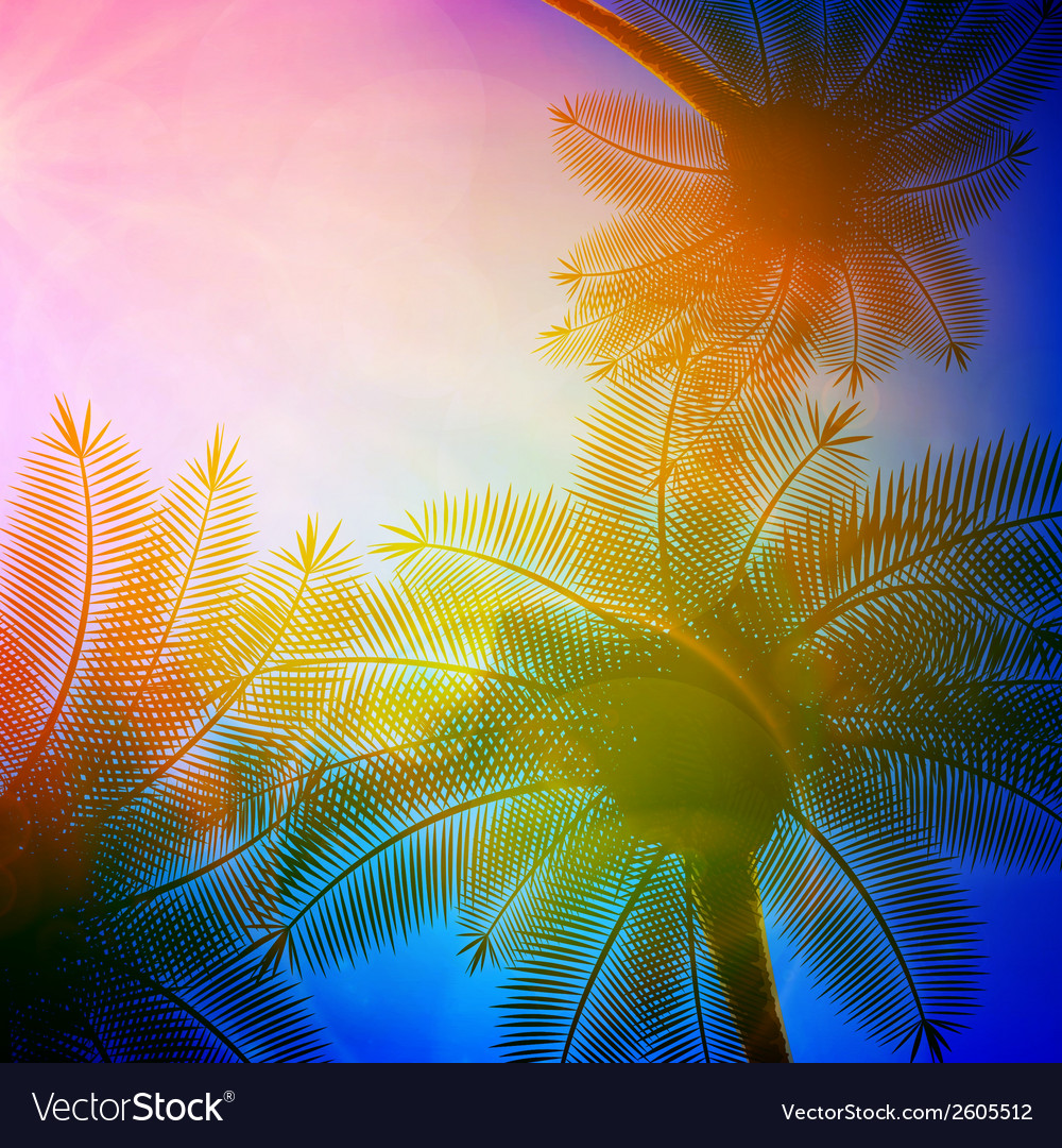 Palm trees with beautiful sunset vector | Price: 1 Credit (USD $1)