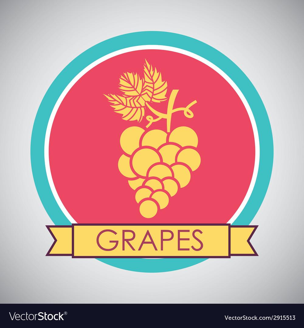 Grapes design vector | Price: 1 Credit (USD $1)