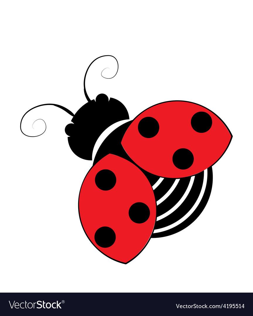 Ladybug isolated on white vector | Price: 1 Credit (USD $1)