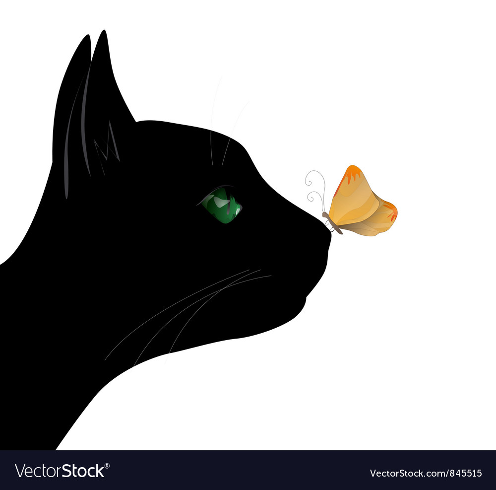 Butterfly on the cat nose vector | Price: 1 Credit (USD $1)