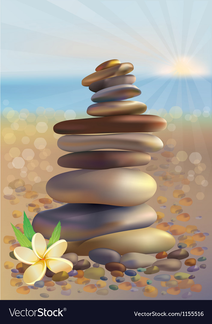 Spa stones and white flower vector | Price: 1 Credit (USD $1)