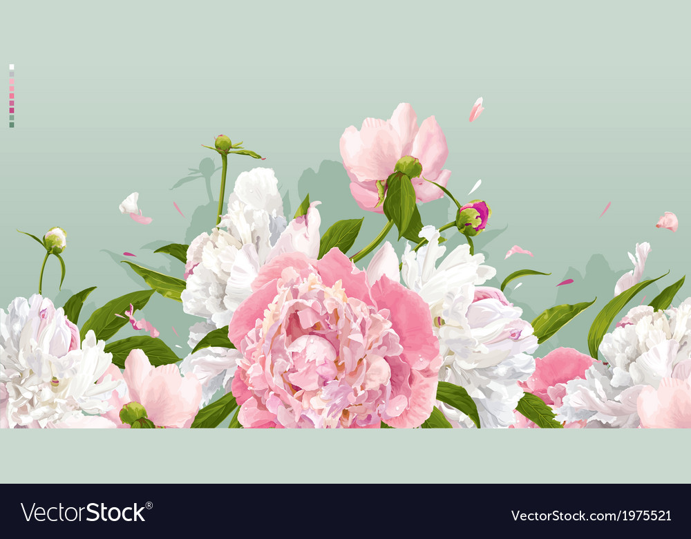 Peony background vector | Price: 1 Credit (USD $1)