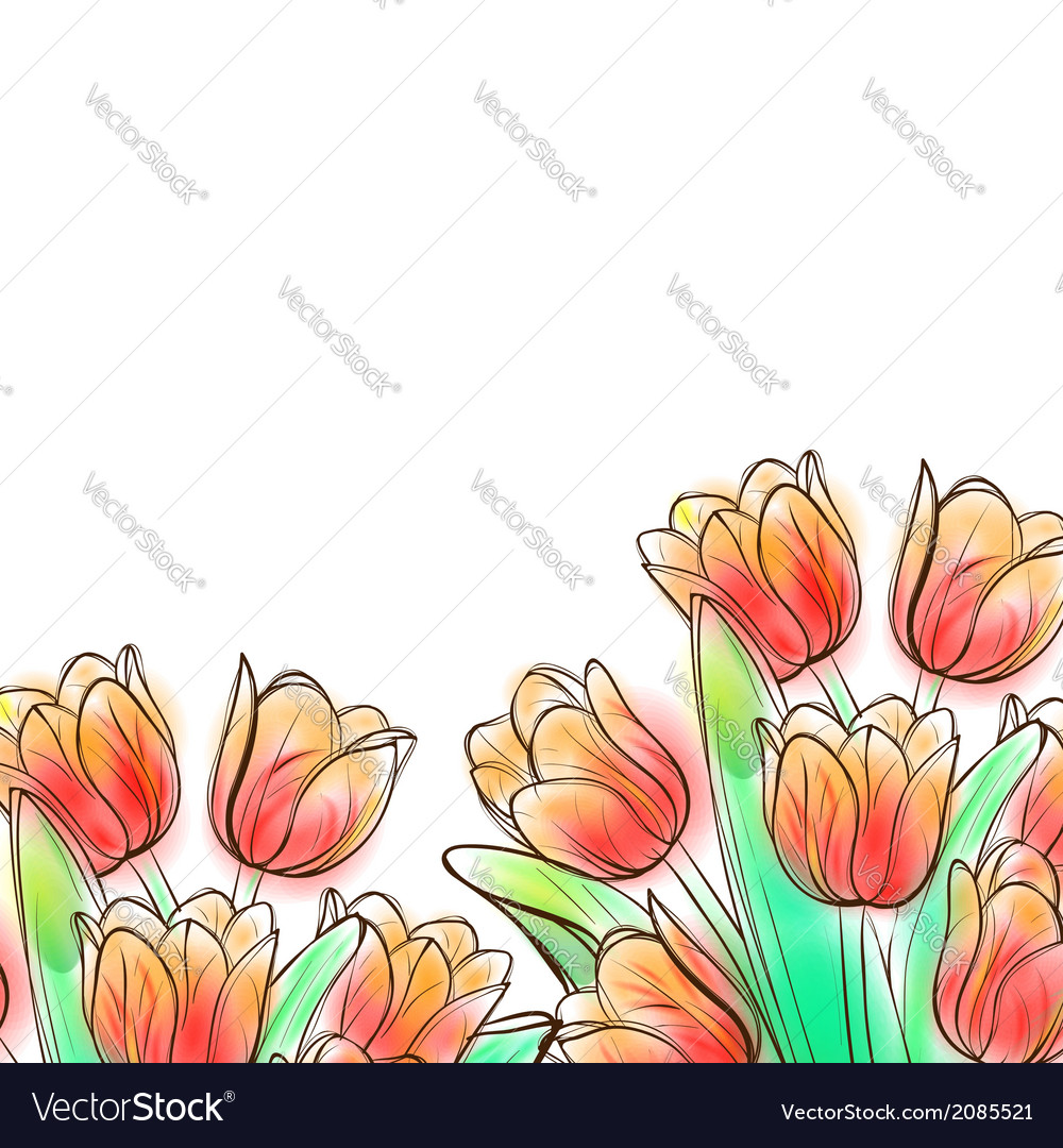 Watercolor tulips vector | Price: 1 Credit (USD $1)