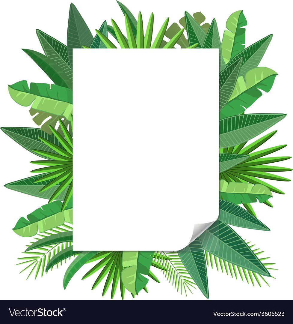 Blank paper tropical leaves vector | Price: 1 Credit (USD $1)