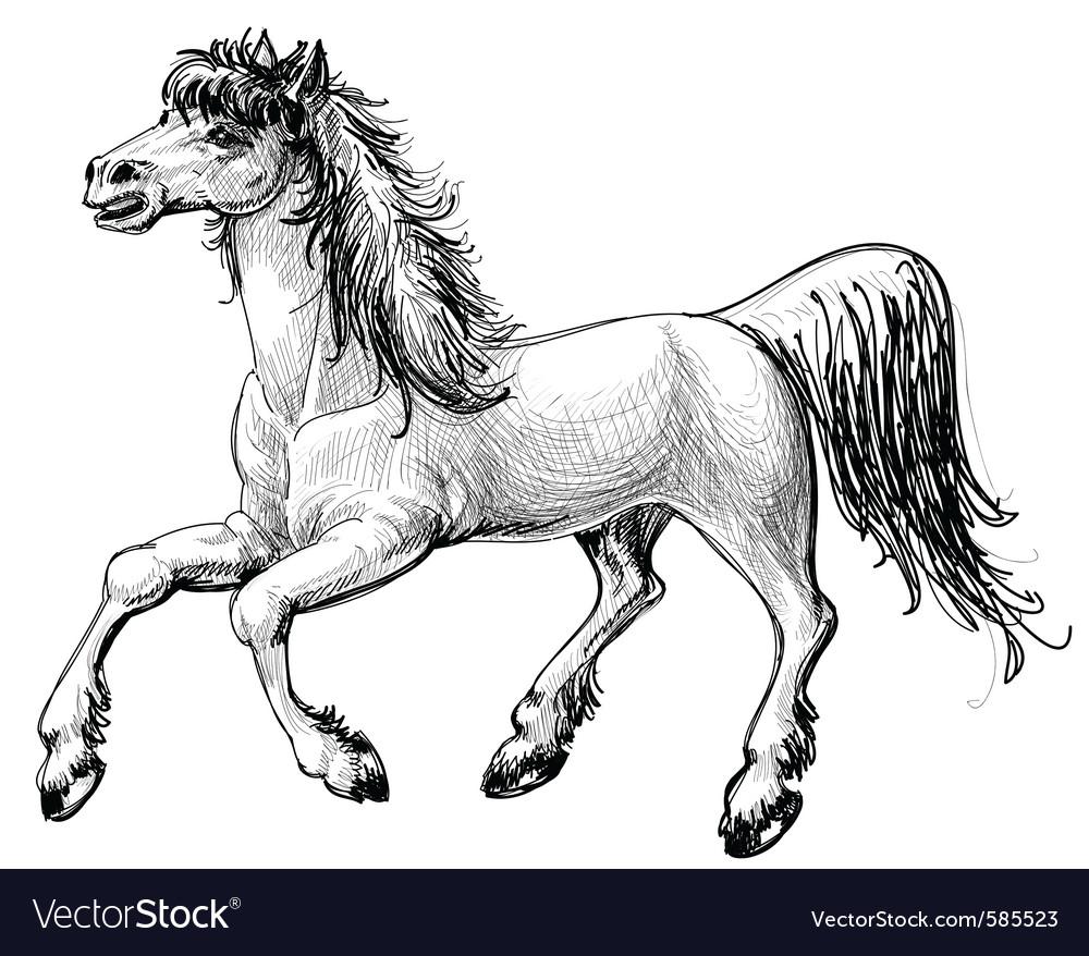 Horse sketch vector | Price: 3 Credit (USD $3)