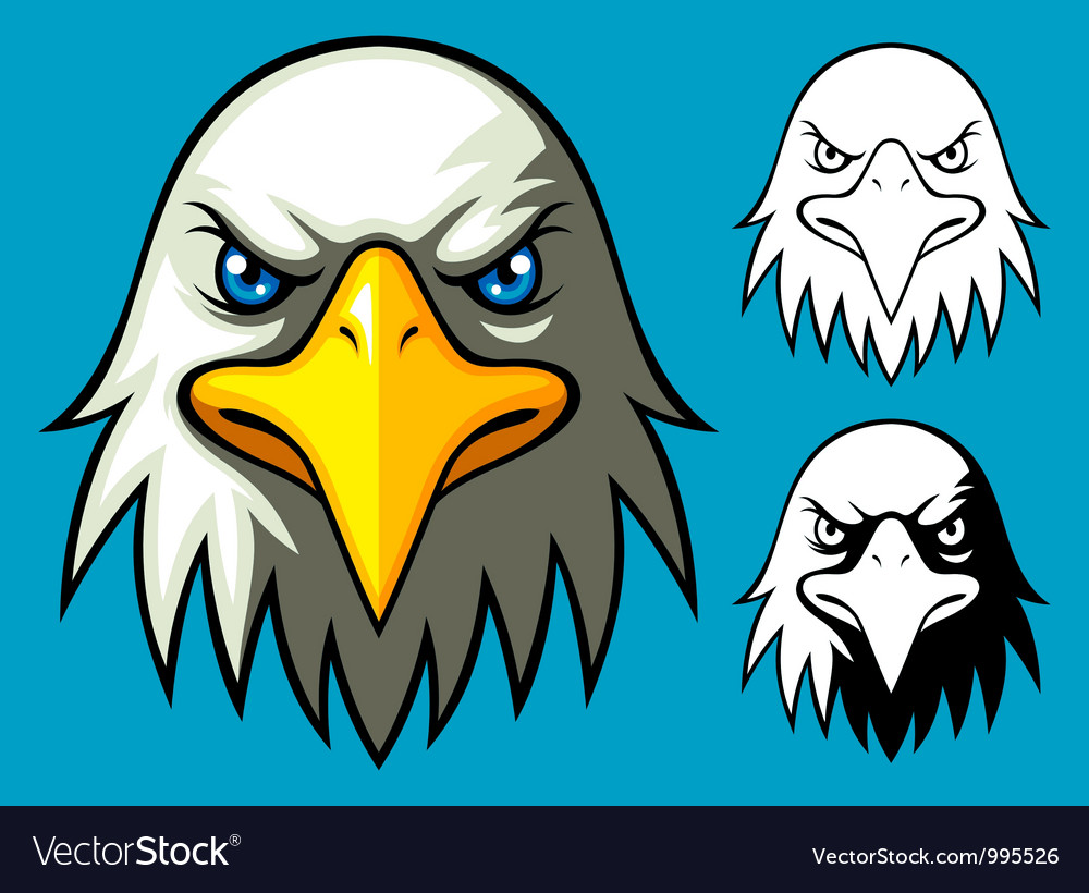 Bald eagle head vector