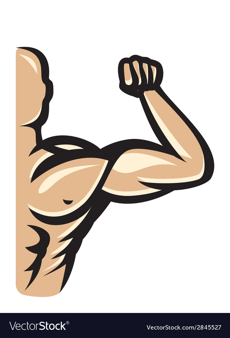 Muscle10 resize vector | Price: 1 Credit (USD $1)