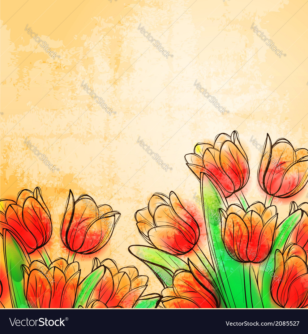 Retro watercolor tulips vector | Price: 1 Credit (USD $1)