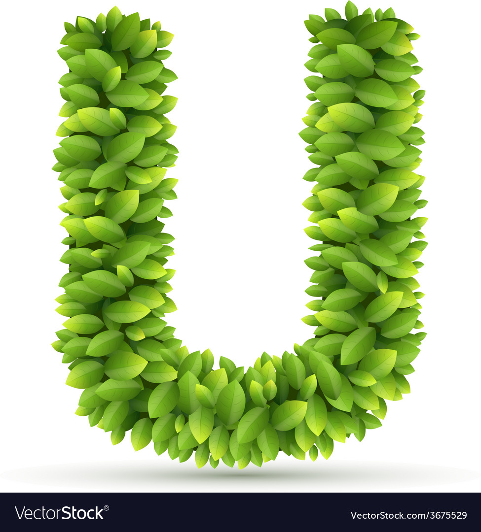 Letter u alphabet of green leaves vector | Price: 1 Credit (USD $1)