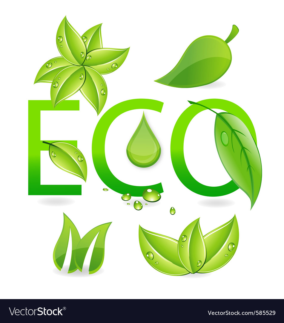 Nature eco leafs vector | Price: 3 Credit (USD $3)