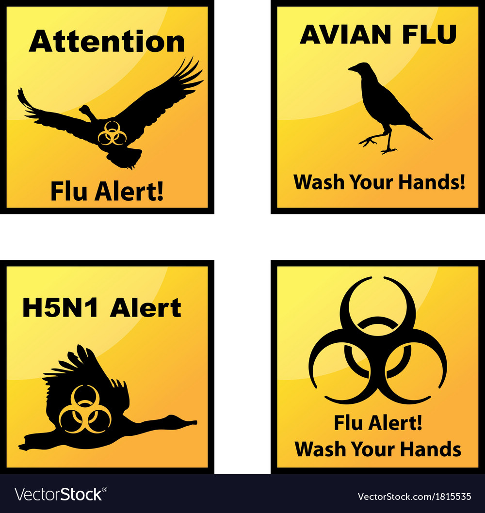 Avian flu alerts icons vector | Price: 1 Credit (USD $1)