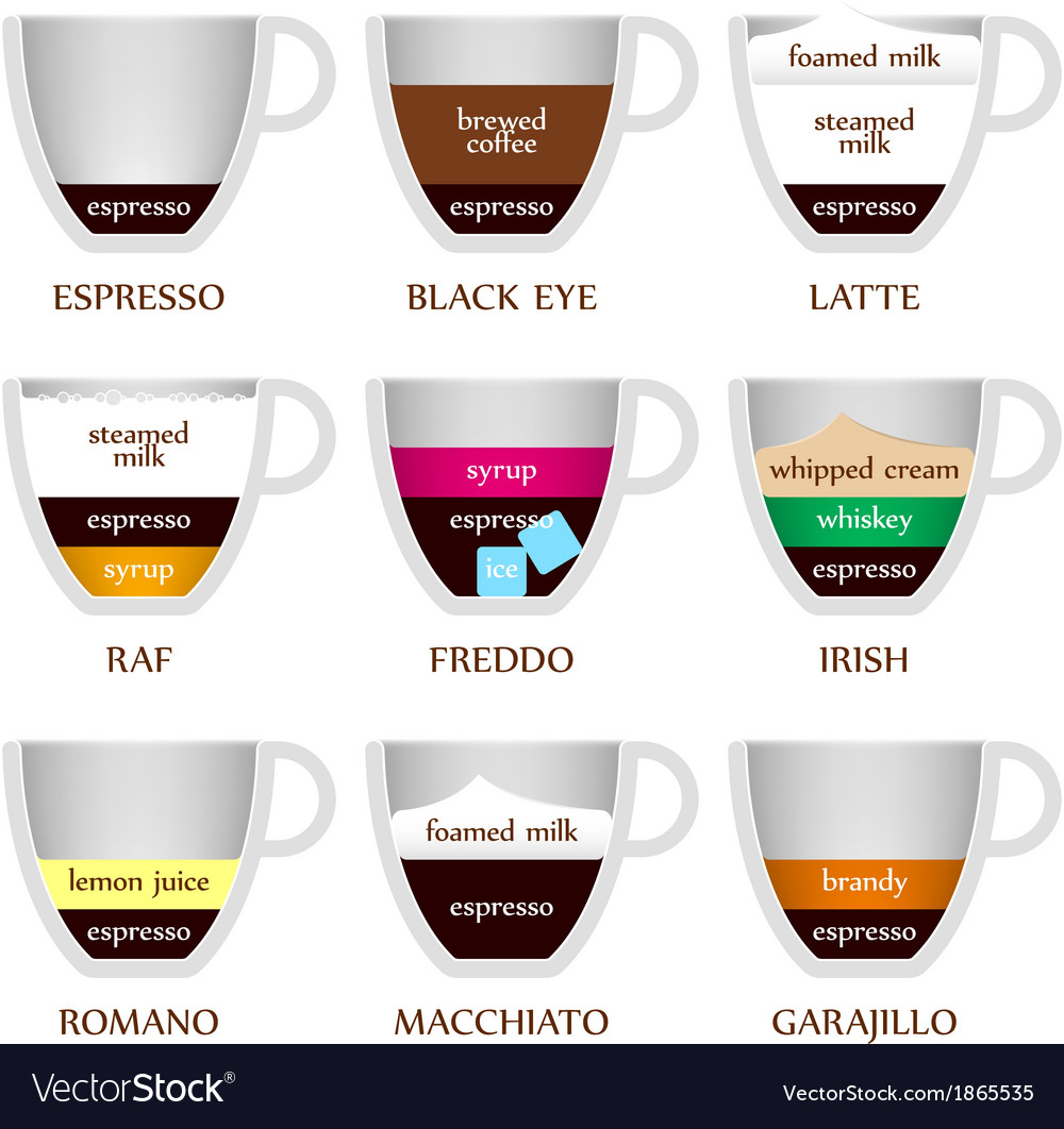 Coffee types vector | Price: 1 Credit (USD $1)