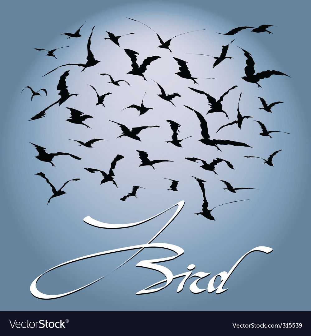 Flock of birds vector | Price: 1 Credit (USD $1)