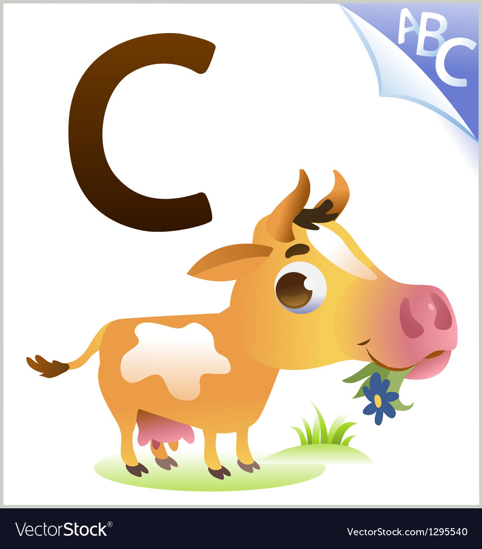 Animal alphabet for the kids c for the cow vector | Price: 1 Credit (USD $1)