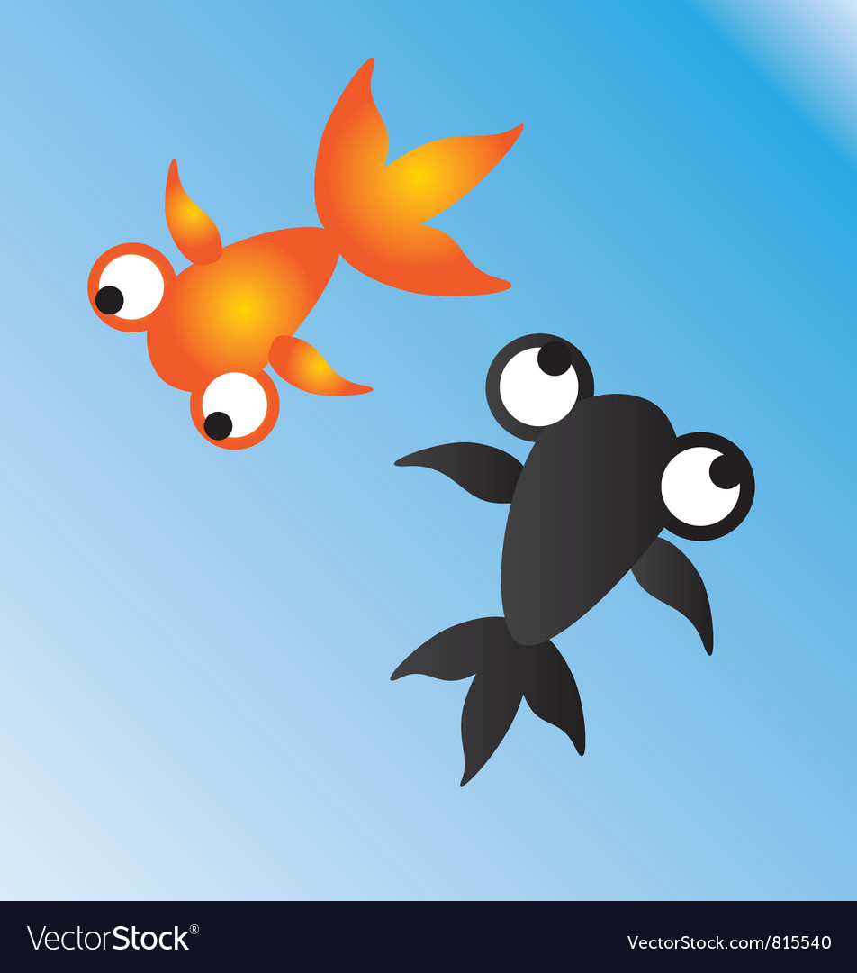 Goldfish orange and black vector | Price: 1 Credit (USD $1)