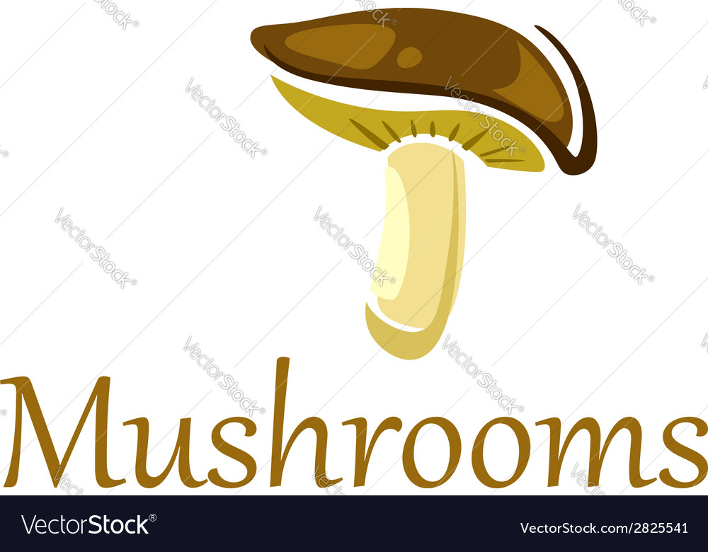 Forest mushroom on white vector | Price: 1 Credit (USD $1)